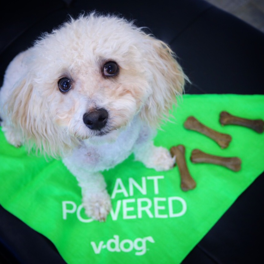Vegan Dog + Giveaway